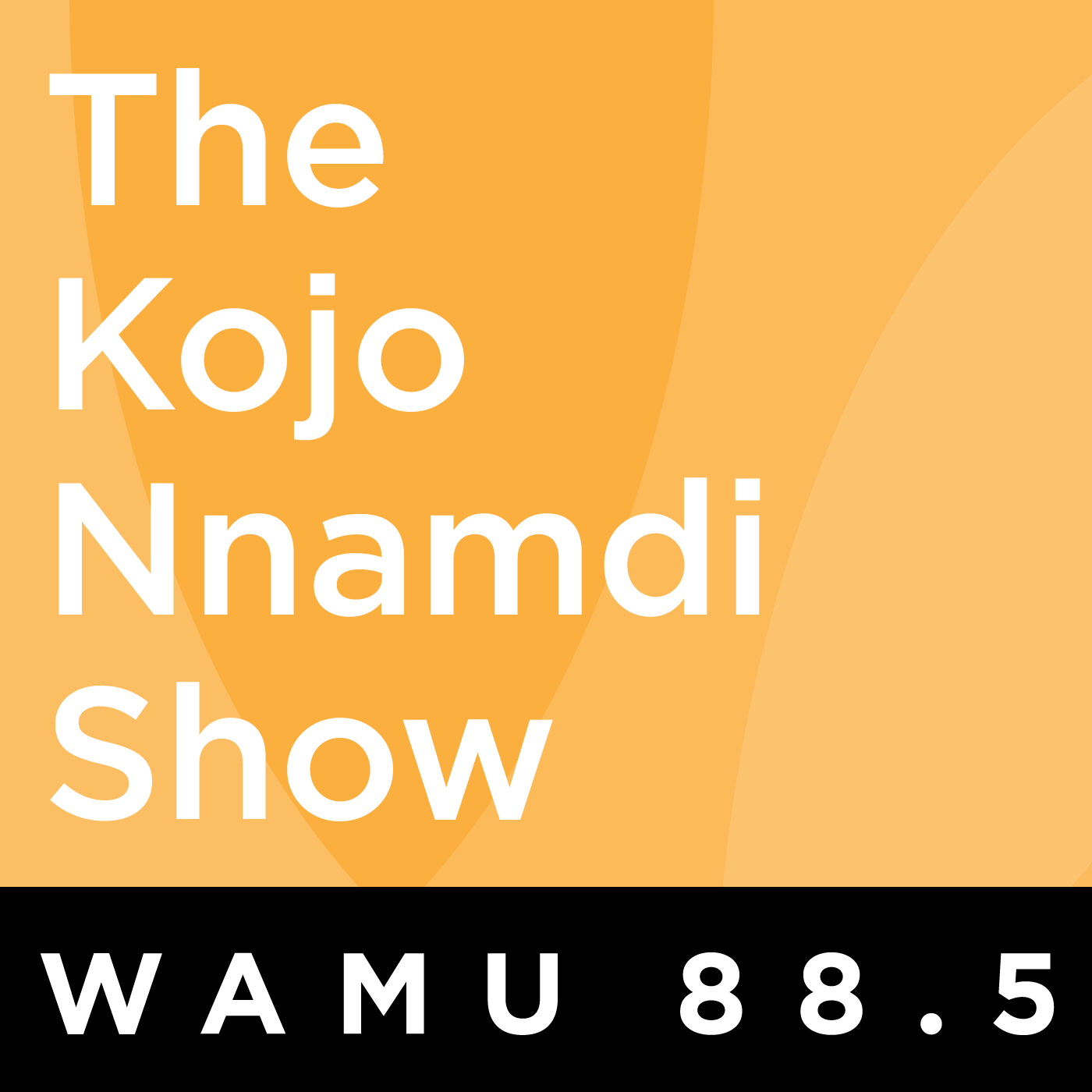 The Kojo Nnamdi Show